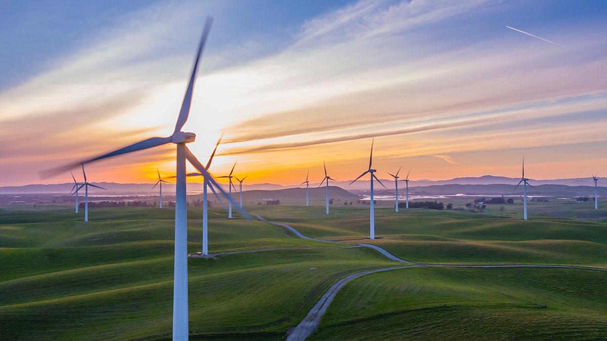 green economy 2